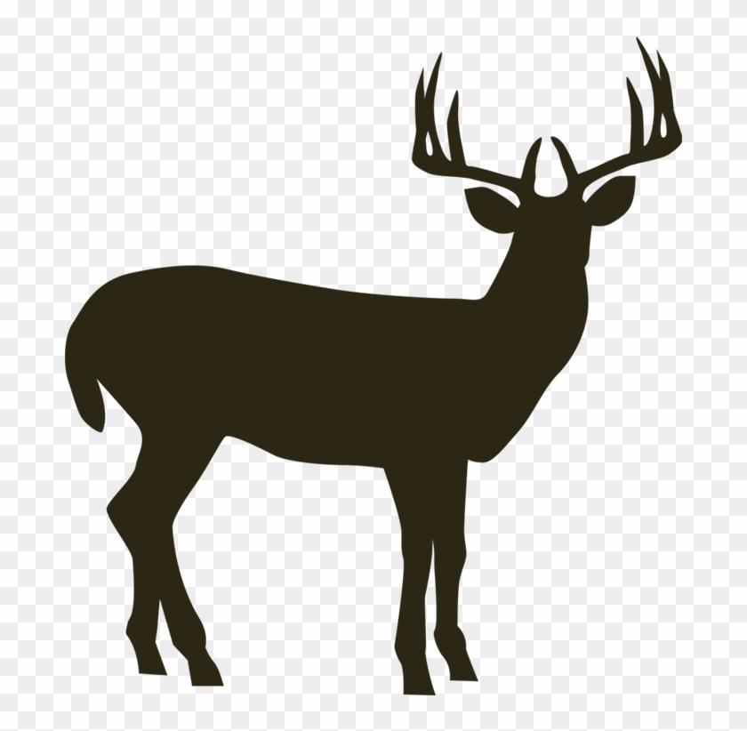 Hunter pixwords deer hd. Hunting clipart moose hunting