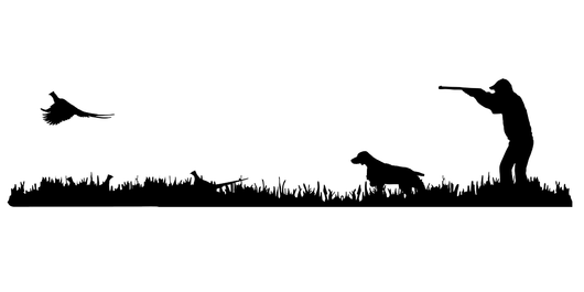Hunter clipart pheasant shooting. Brittany bird dog rooster