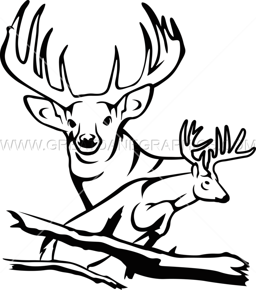 Line drawing at getdrawings. Hunting clipart 8 point buck