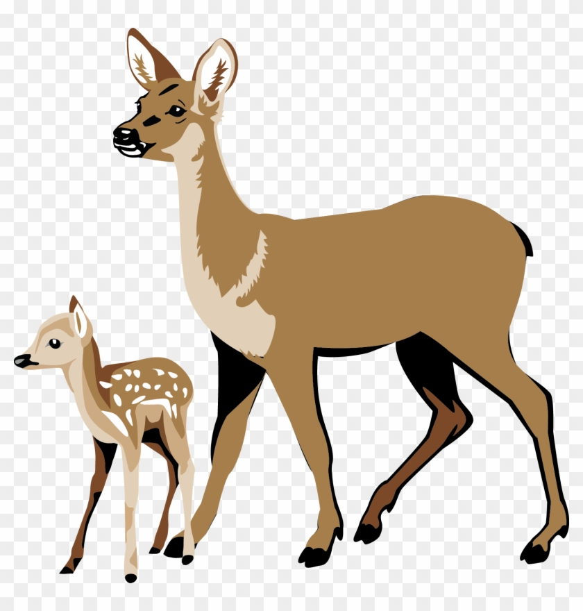 Hunting clipart 8 point buck. White tailed deer clip