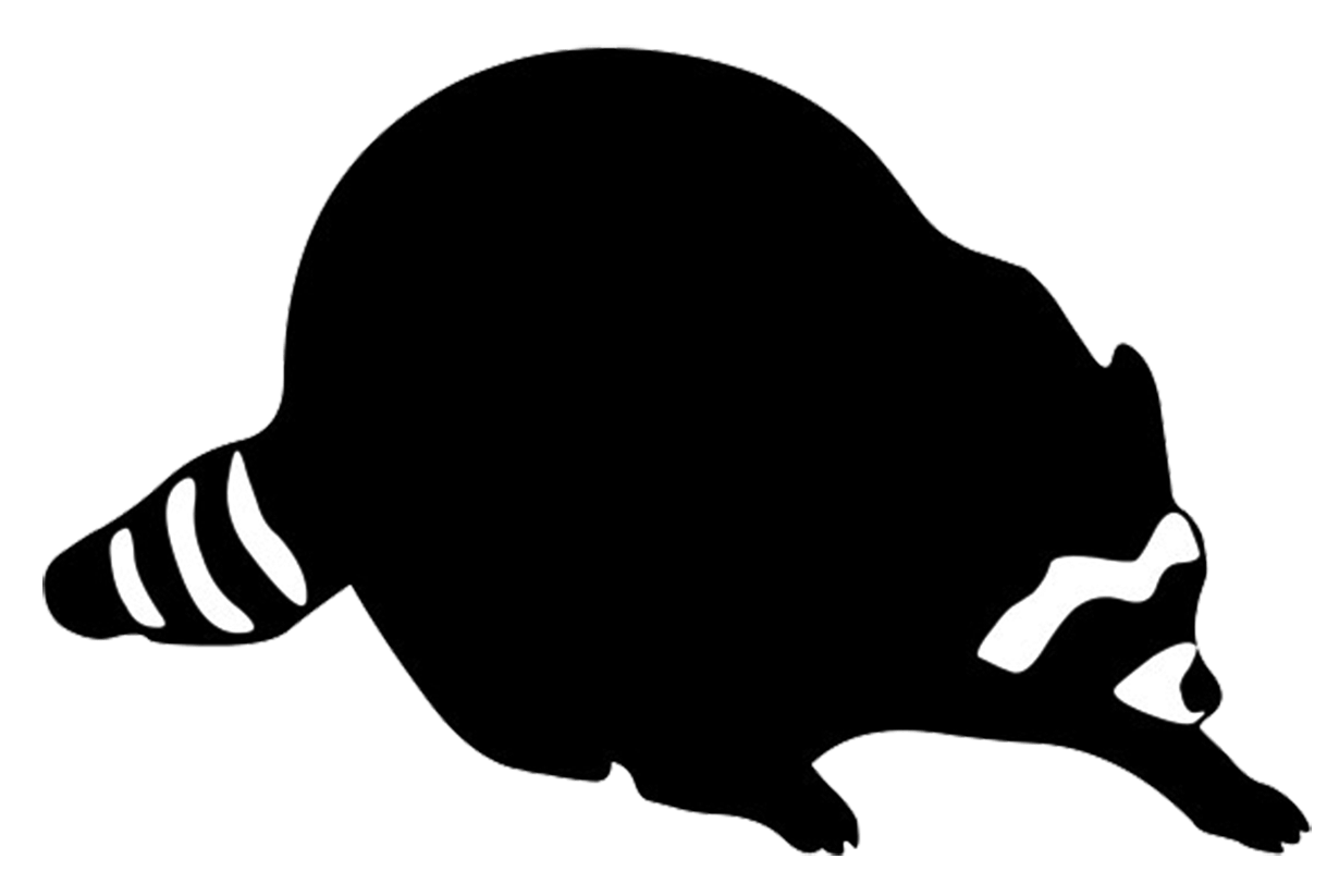 Raccoon black and white. Hunting clipart beagle