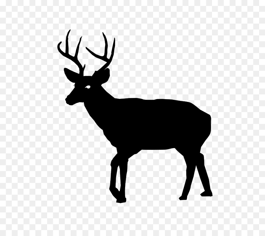 Hunting clipart black tailed deer. White clip art