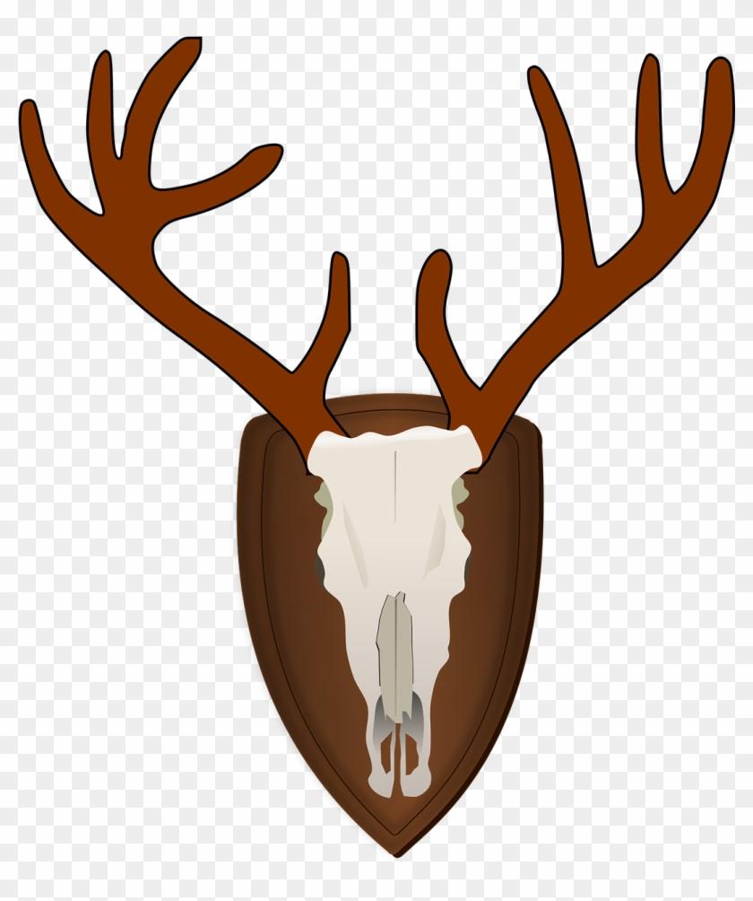 Antlers png trophy transparent. Hunting clipart deer antler