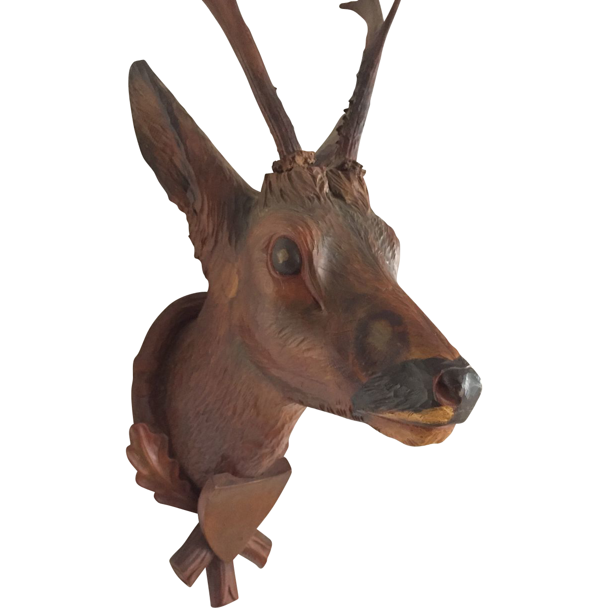 Adorable design of picture. Hunting clipart deer bust