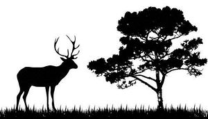 Free cliparts download clip. Hunting clipart deer scene