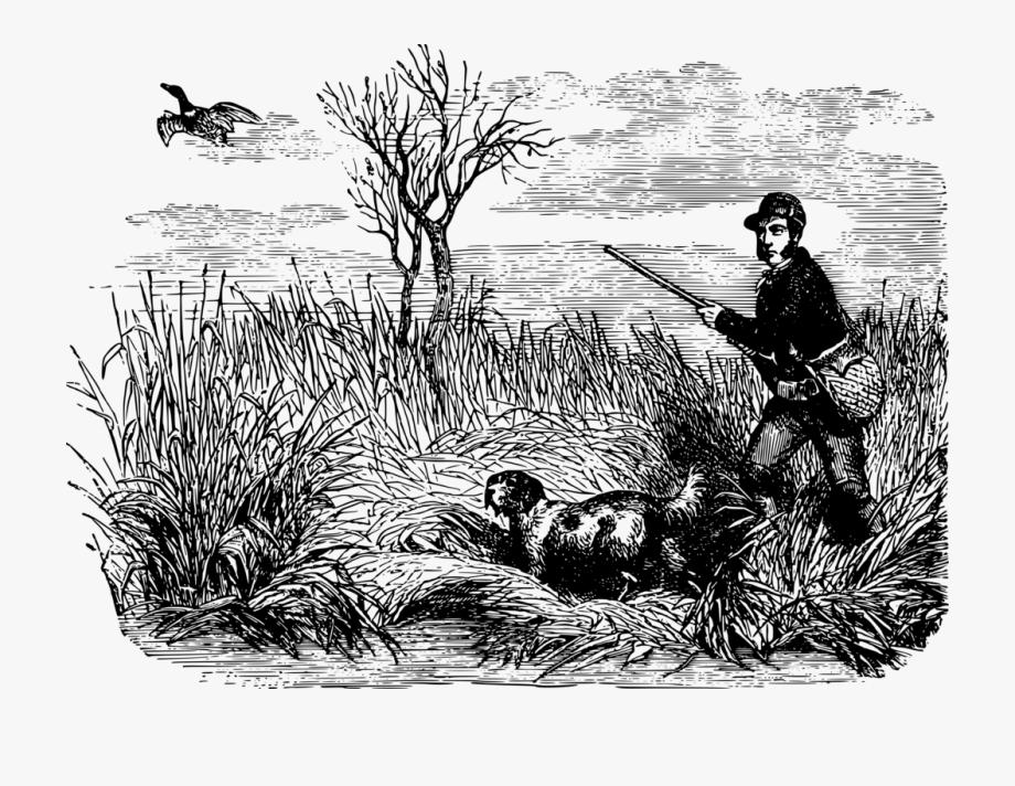 Hunting clipart duck hunting. Mallard waterfowl drawing bird