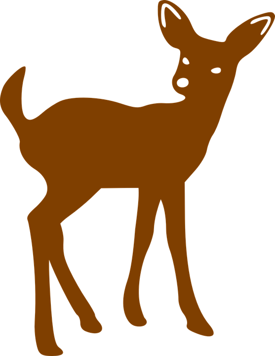 Hunting clipart elk. Deer cliparts shop of