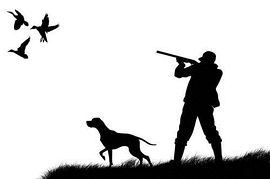 Hunting clipart hunting dove. Clip art library