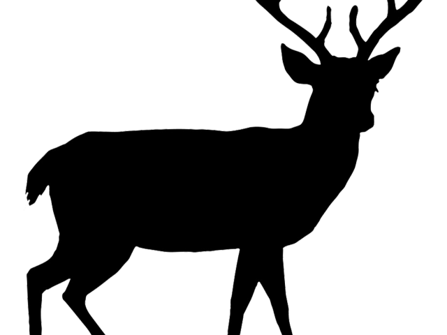 Hunting clipart outdoorsman.  buck huge freebie