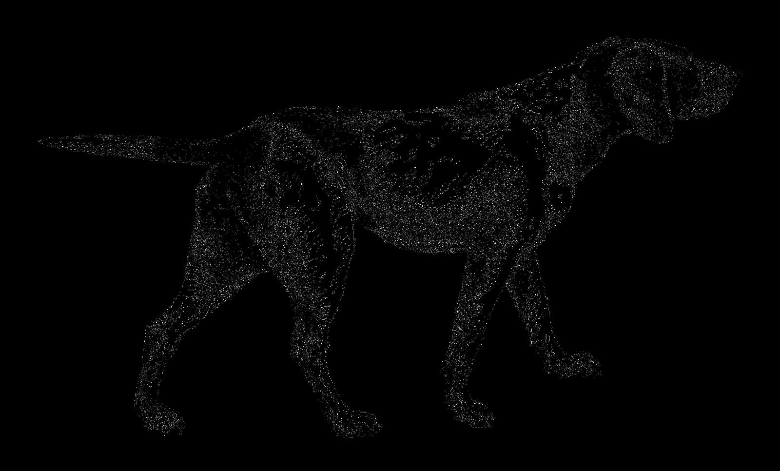 Sleigh clipart dog. Digital stamp design september