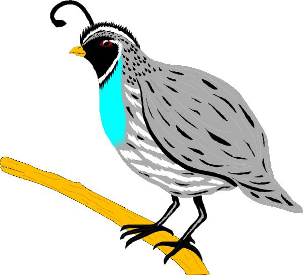 Hunting clipart quail.