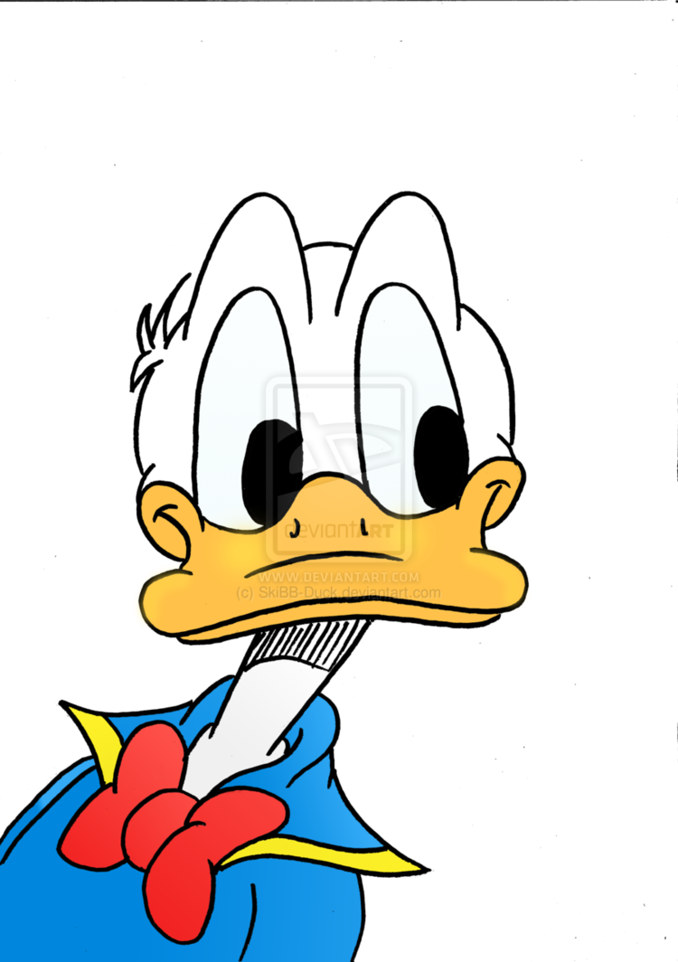 donald the golden. Hunting clipart sunset duck
