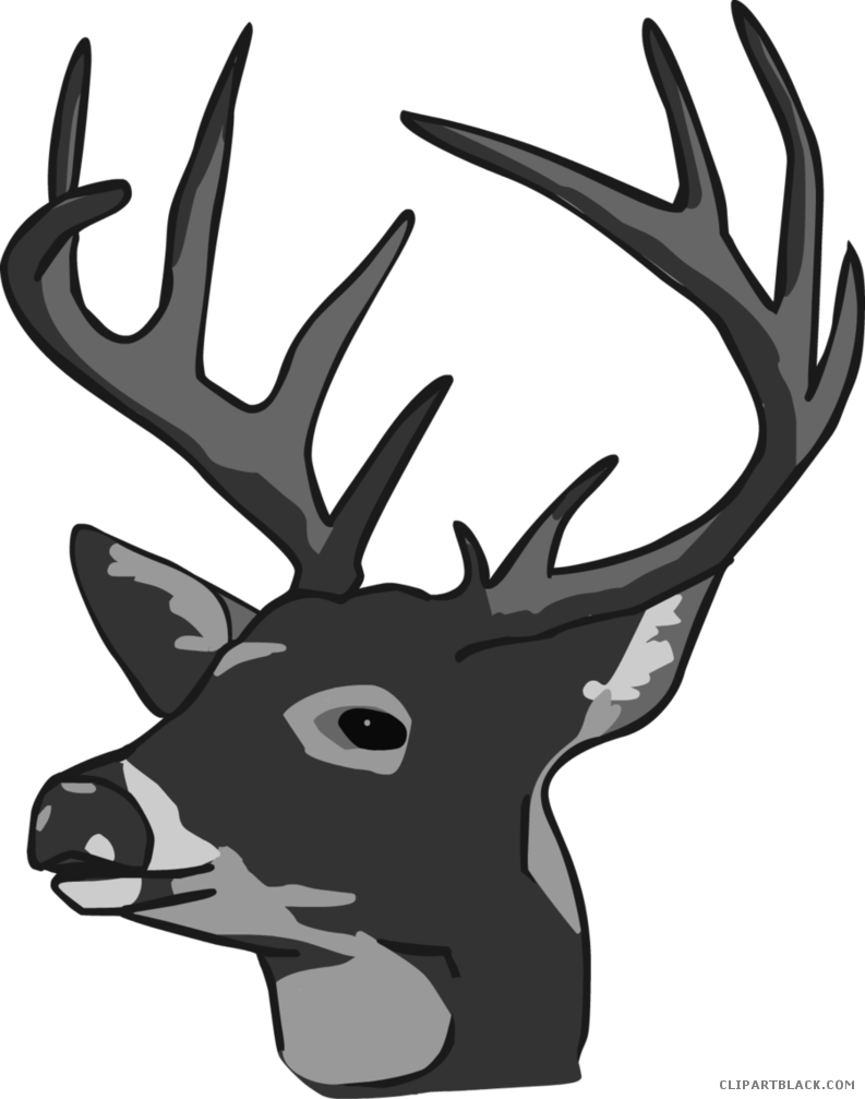 Hunting clipart whitetail buck. Deer page of clipartblack
