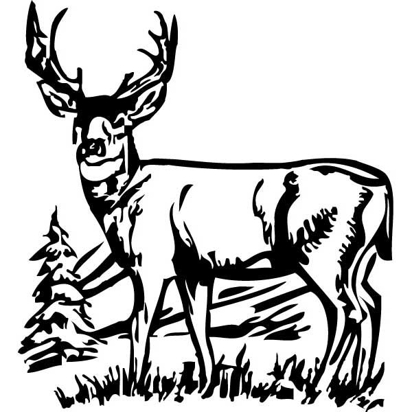 Hunting clipart wildlife scene. Collection of free download