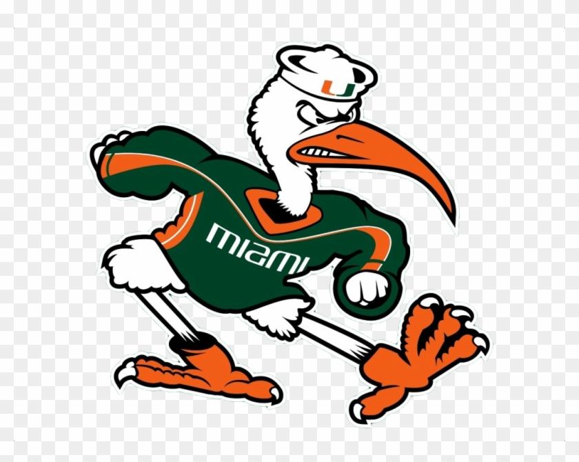 Miami hurricanes cliparts university. Hurricane clipart mascot
