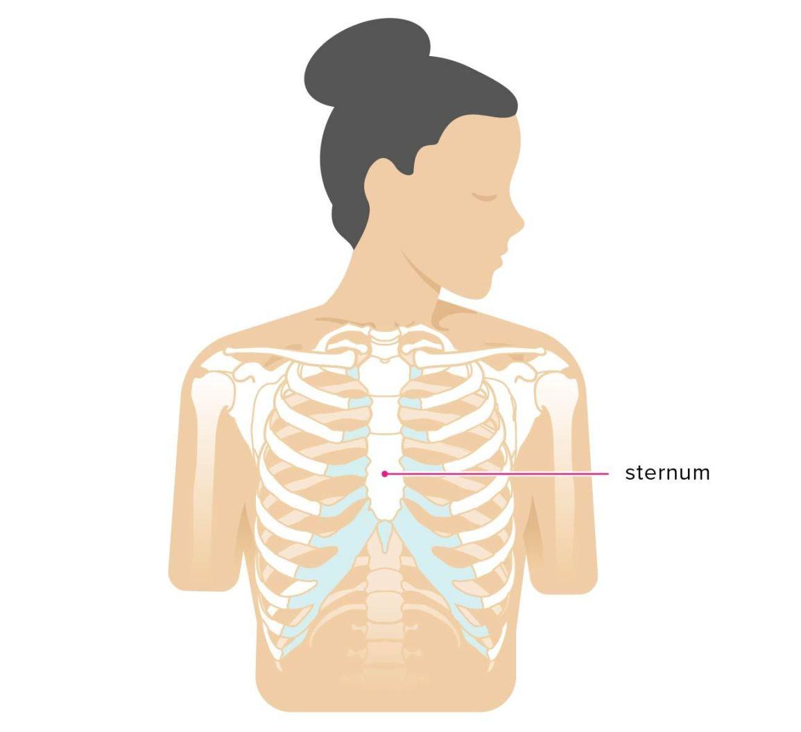 Hurt clipart bone pain. Sternum popping treatment chest