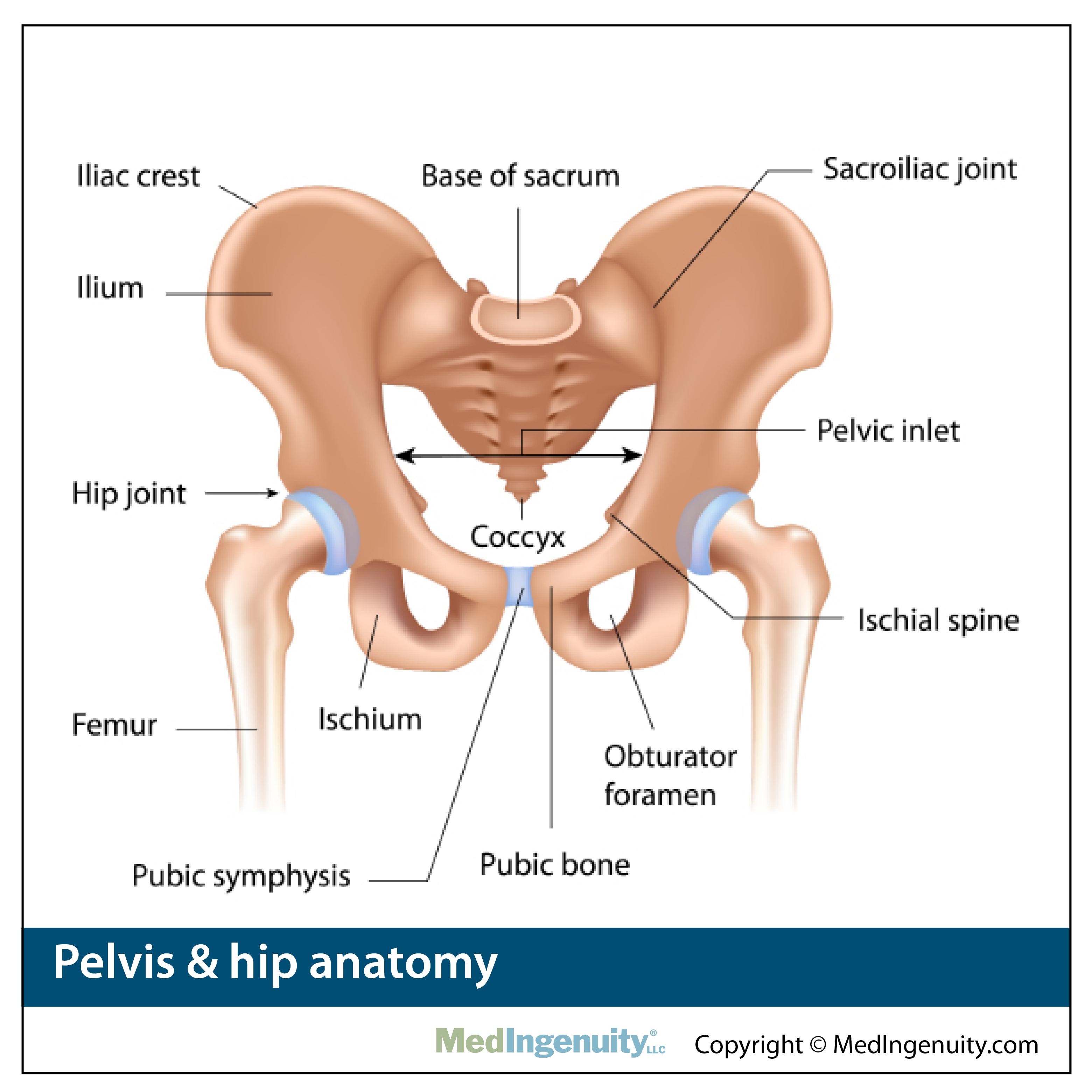 Northwest hills surgical hospital. Hurt clipart hip pain