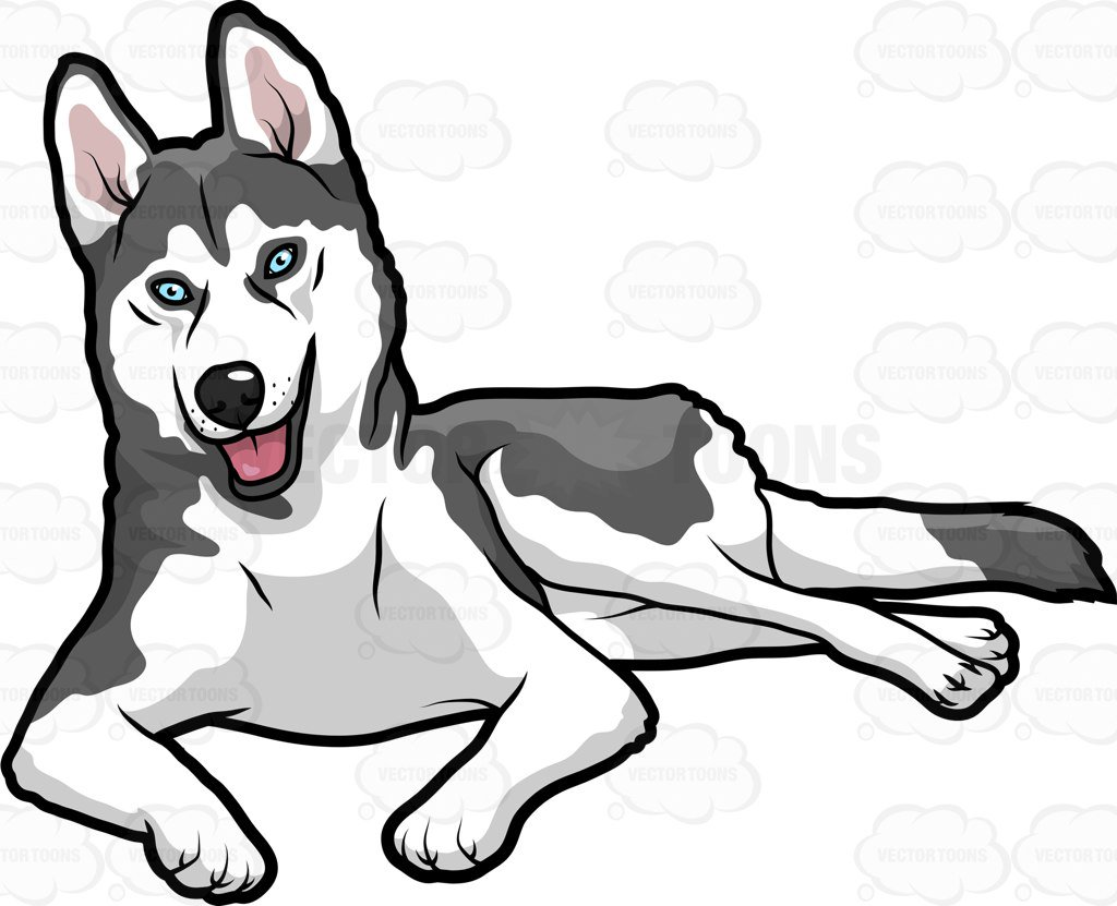 Huskies free download best. Husky clipart baby husky