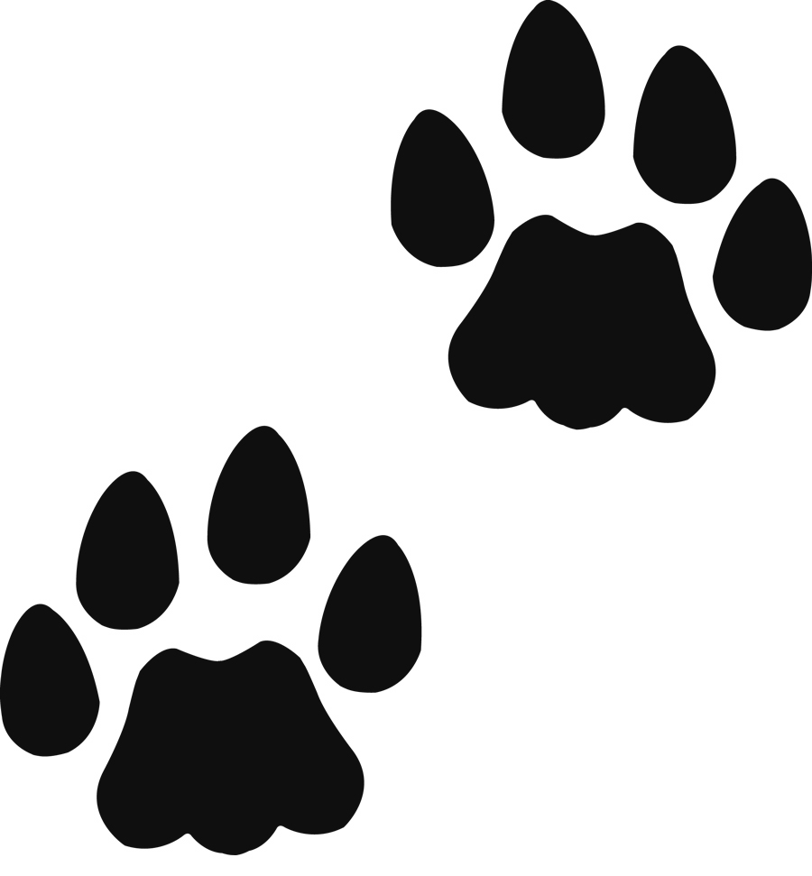 Husky paw cliparts free. Pawprint clipart teddy bear