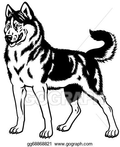 Husky clipart black and white. Vector illustration siberian eps