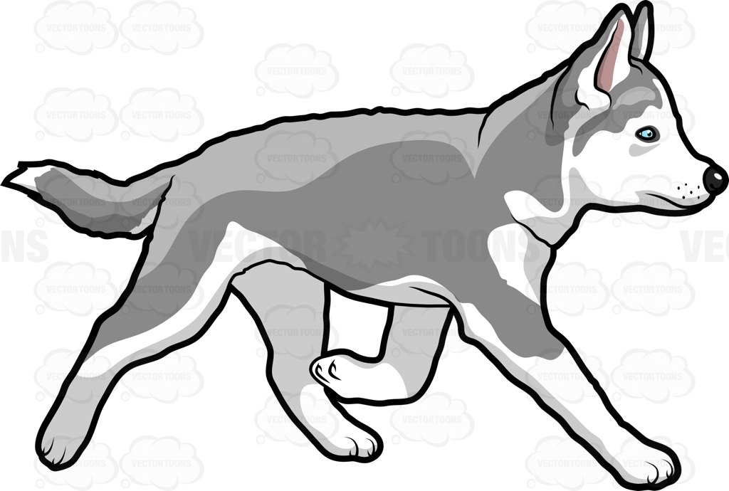 Husky clipart canine. Dog easy free download