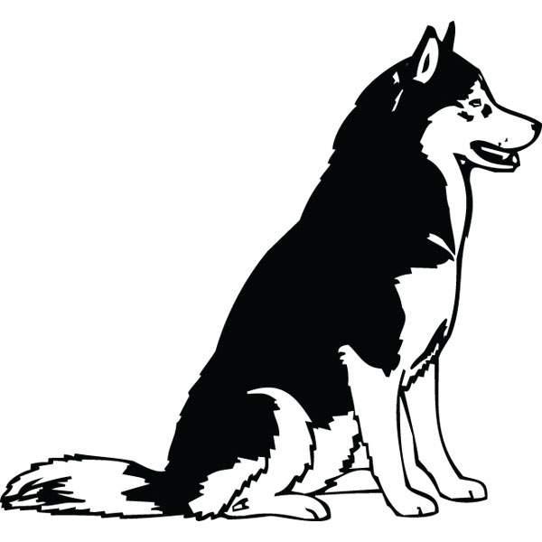 Huskies free download best. Husky clipart clip art