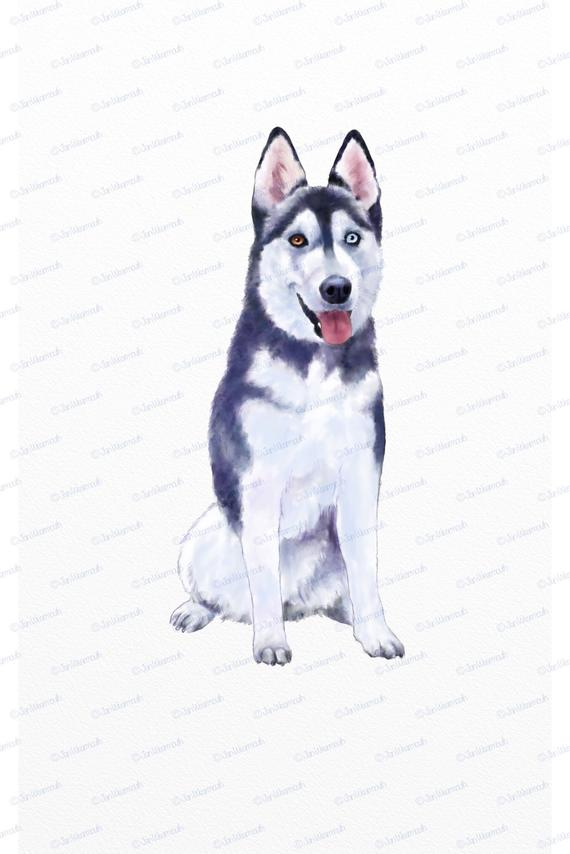 Husky clipart clip art. Dog instant download digital
