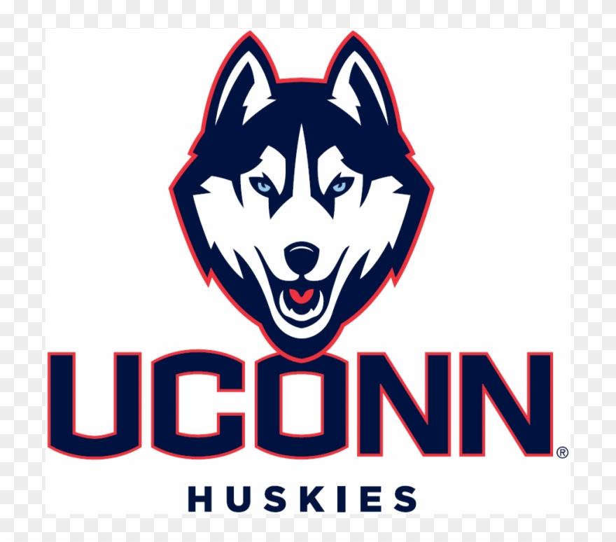 Uconn huskies iron ons. Husky clipart connecticut university