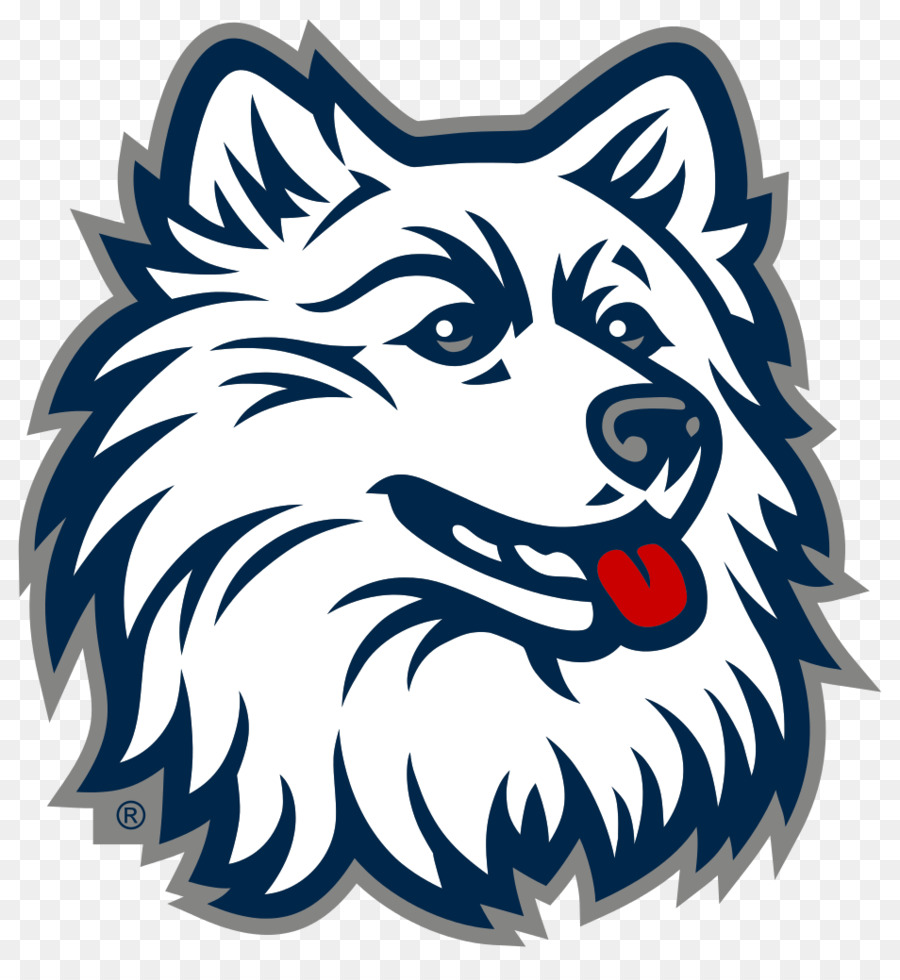 Husky clipart connecticut university. Mascot logo png download