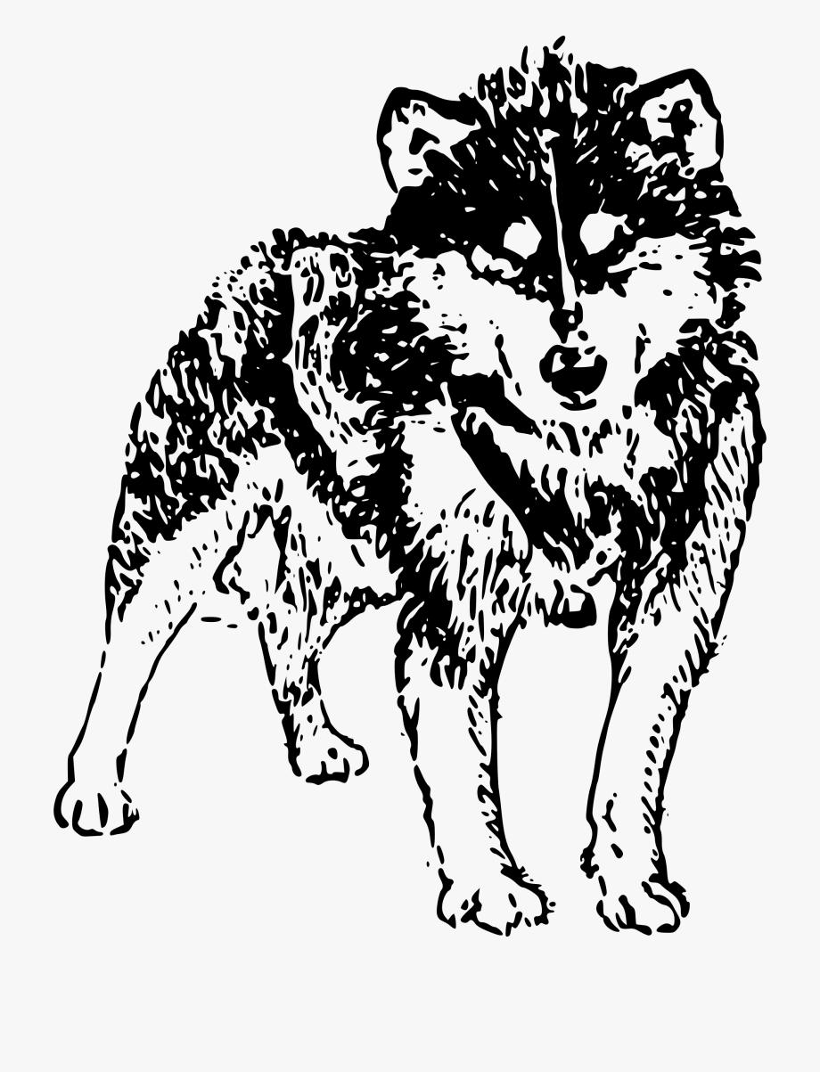 Husky clipart dog collar tag. Siberian free cliparts on