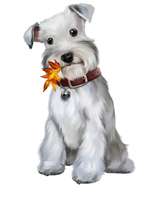 Chiens puppies wallpapers clip. Husky clipart gray dog