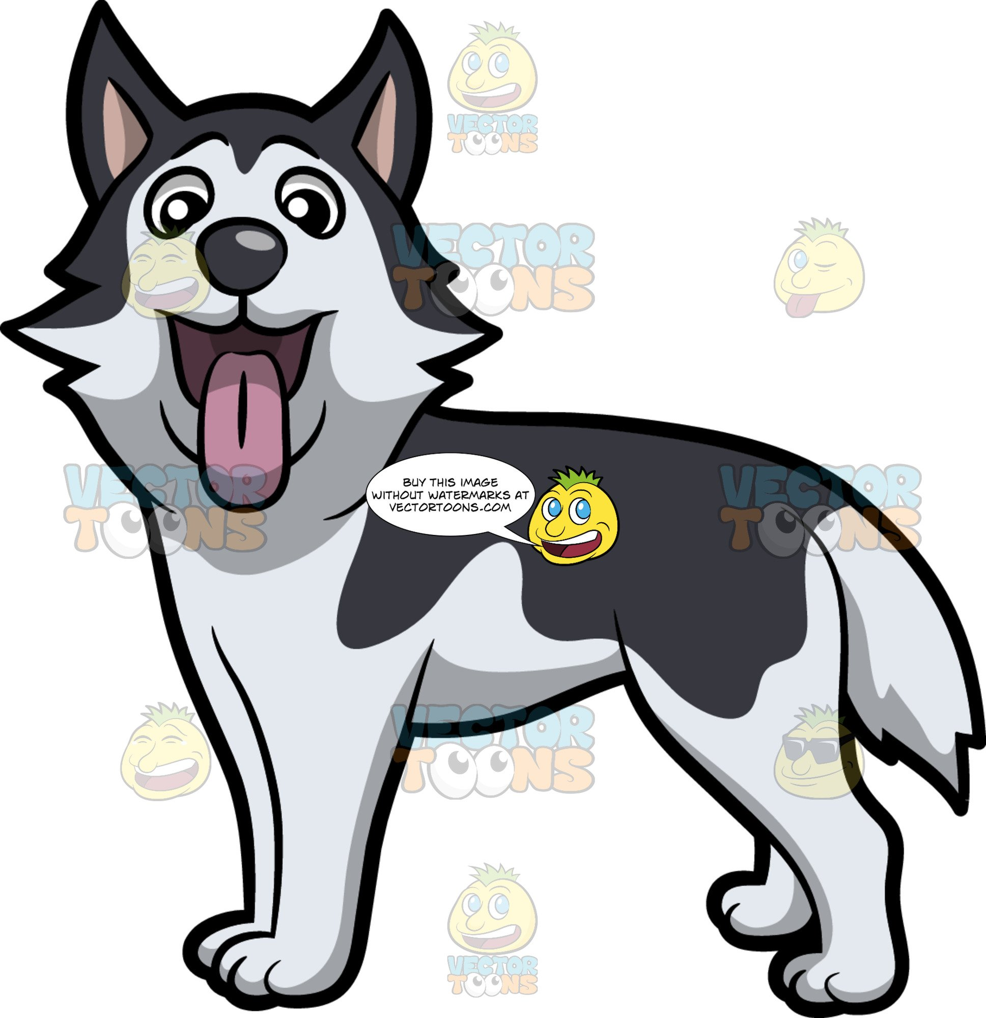 An excited young . Husky clipart gray dog