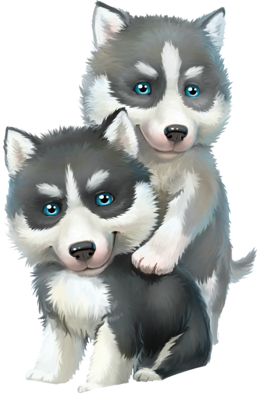 Husky clipart husky eye. Dogs dog puppies wallpapers