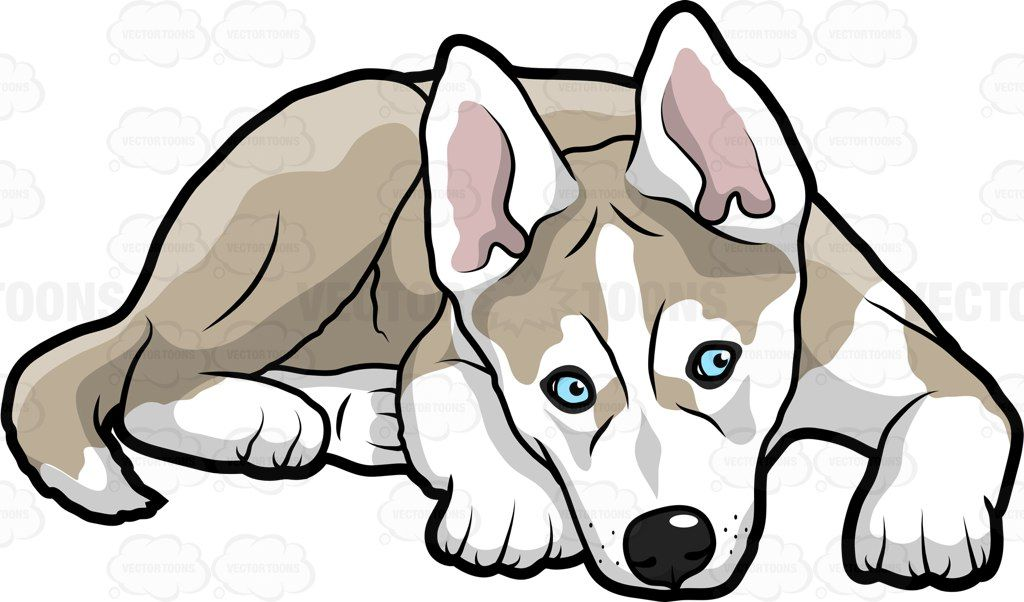 Husky clipart large dog. Pin on animals clip
