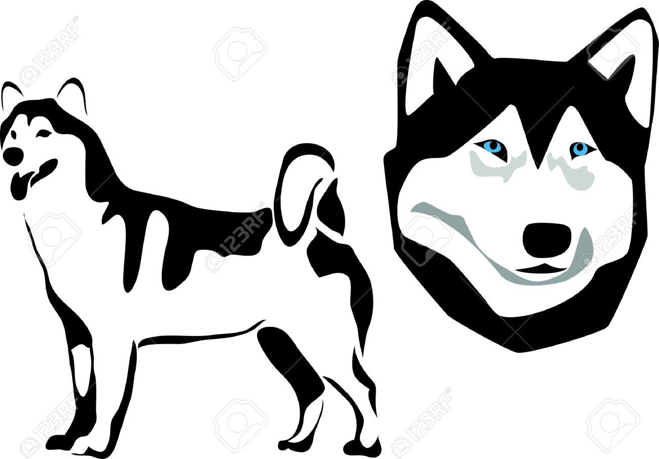 Collection of free download. Husky clipart malamute