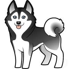Free cliparts download clip. Husky clipart real puppy