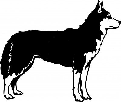 Free siberian cliparts download. Husky clipart silhouette