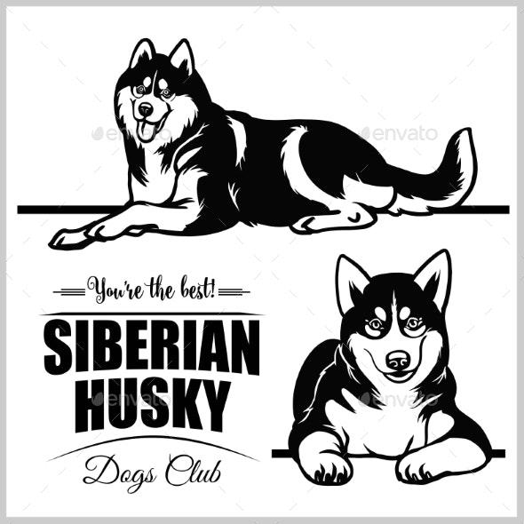 Siberian set isolated illustration. Husky clipart vector