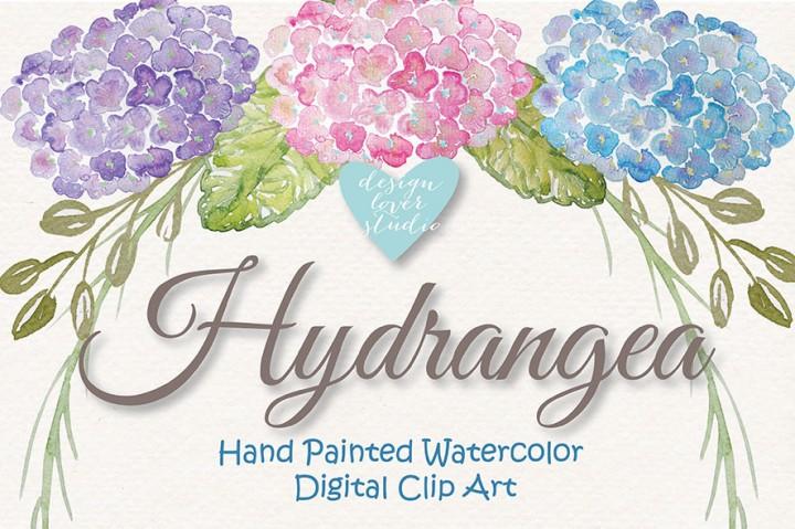 Hydrangea clipart. Watercolor flowers by designloverstudio