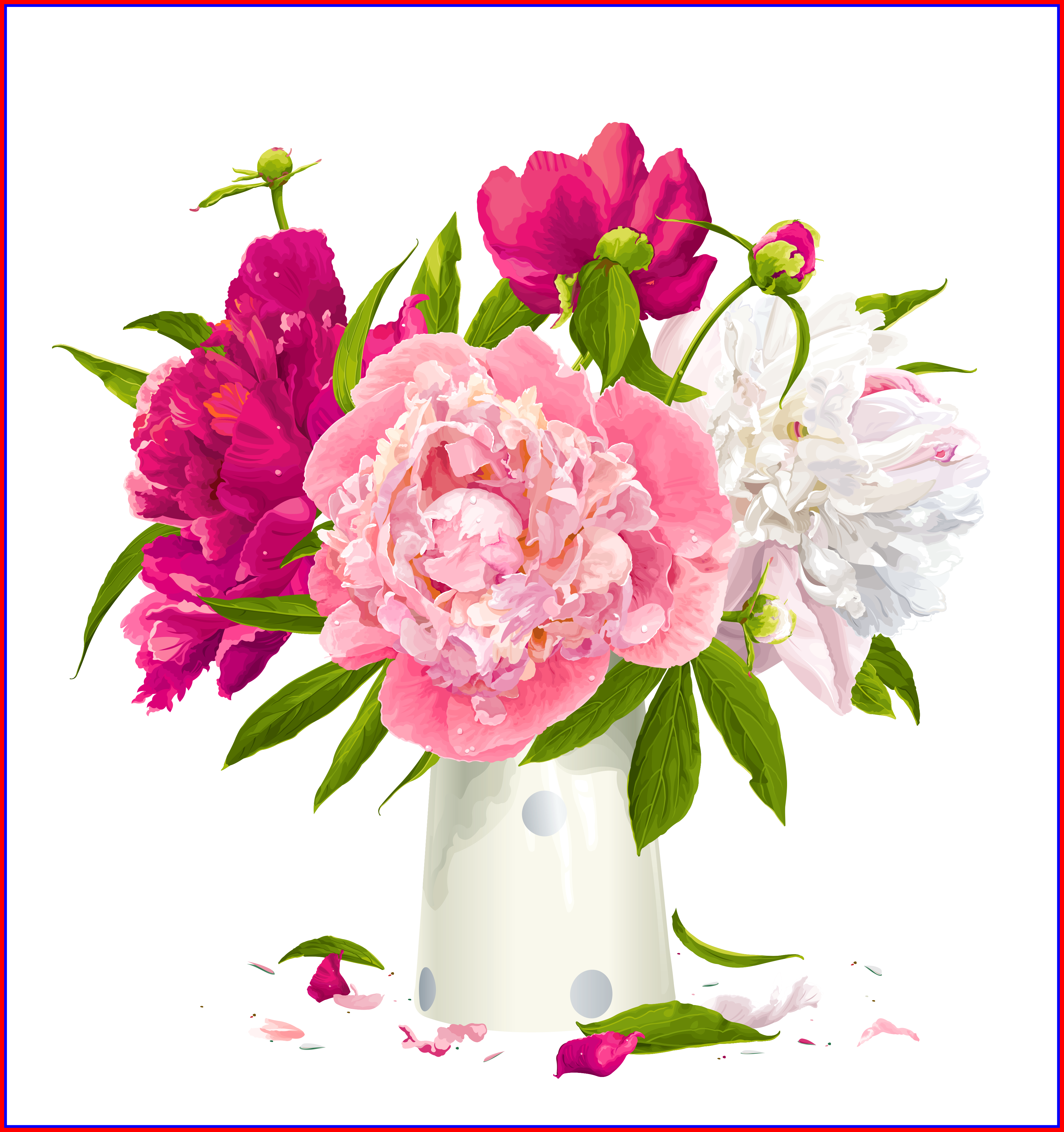 Hydrangea clipart high resolution. Shocking souvisejici obrazek rozdelovniky