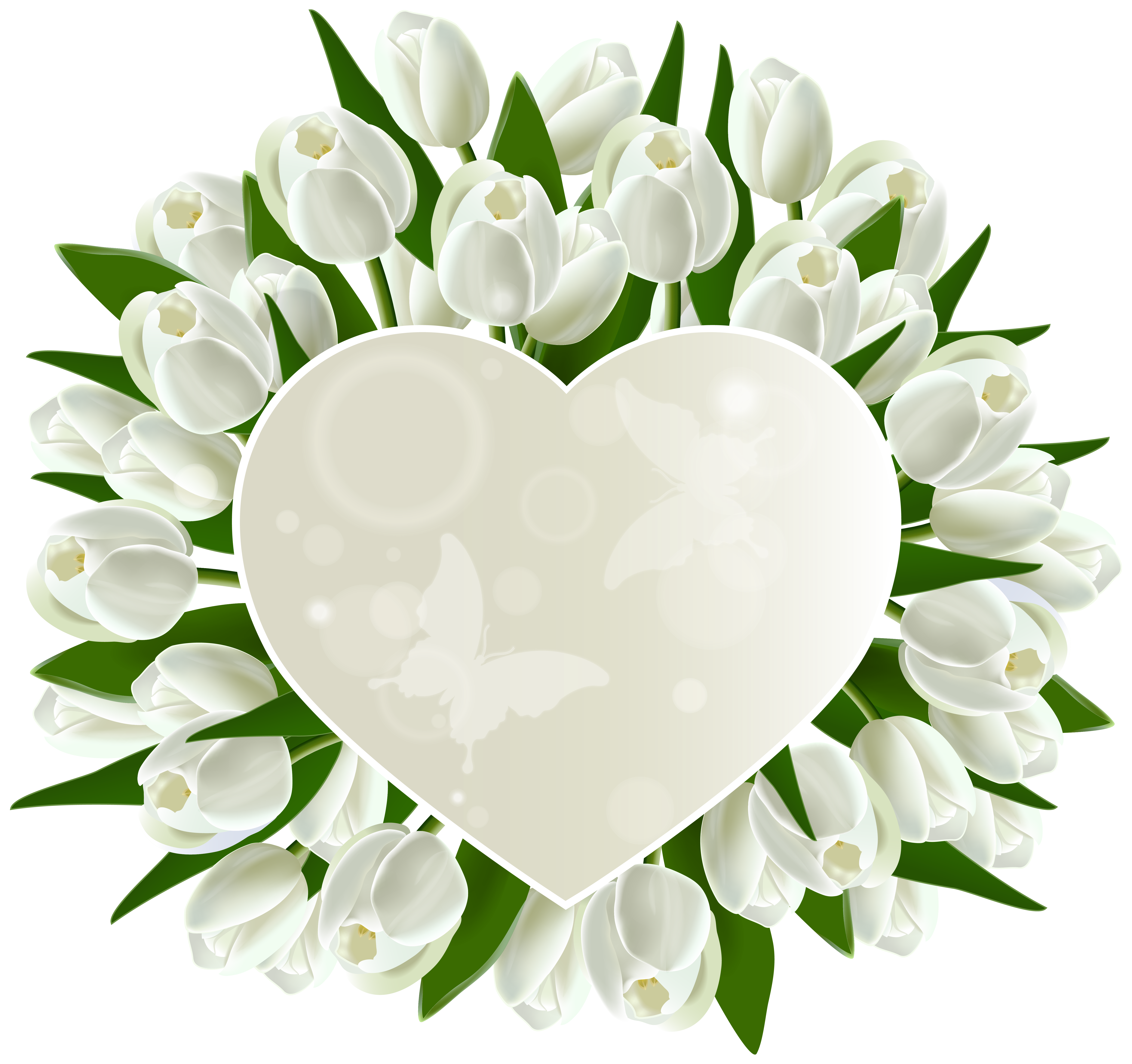 Hydrangea clipart high resolution. White tulips heart decoration