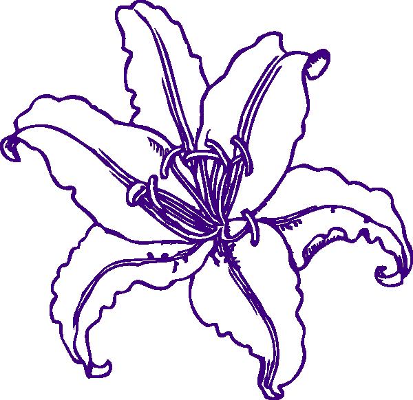 Hydrangea clipart vector. Purple lilly clip art