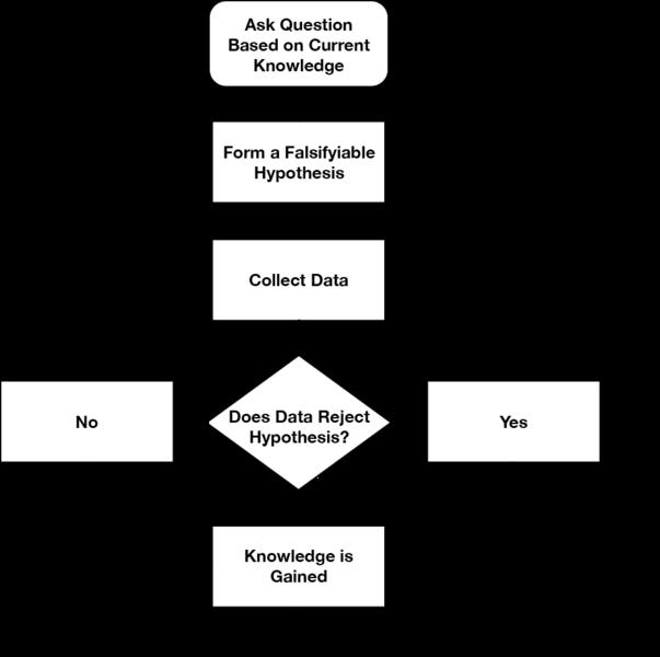 Png transparent images filescientific. Hypothesis clipart scientific method hypothesis