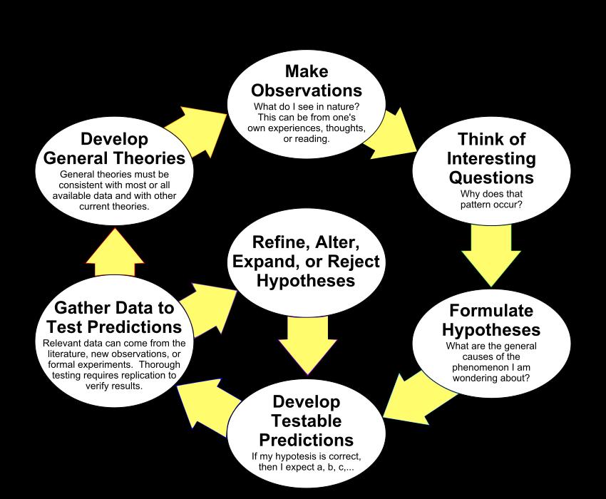 Episode the scientific method. Hypothesis clipart thorough