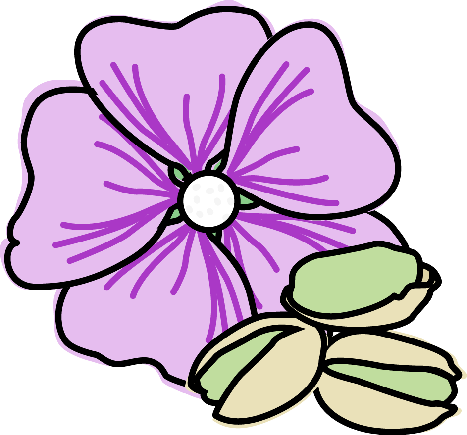 Icecream clipart purple. Geranium and pistachio ice