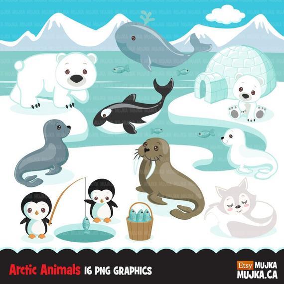 Arctic animals cute winter. Igloo clipart printable