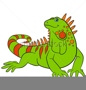 Iguana clipart. Free images at clker