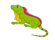 Iguana clipart. Reptiles clip art pictures