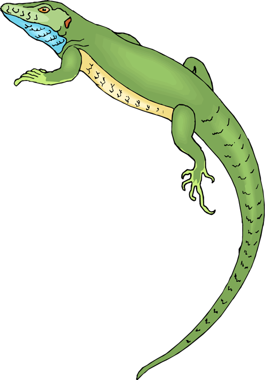 Free. Lizard clipart blue lizard