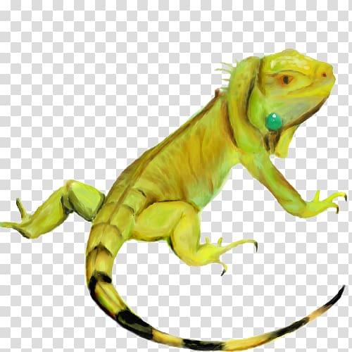 Iguana clipart chameleon. Common iguanas chameleons hd